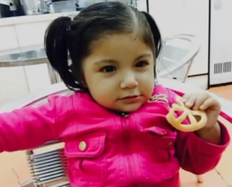 henderson nevada police dog doerak attacks 17 month old ayleen alvarez