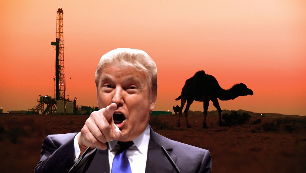 Trump immigration war middle east