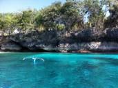 Exquisite Paradise