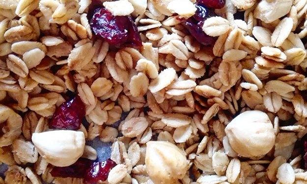 Granola con nocciole, mandorle e mirtilli rossi home made