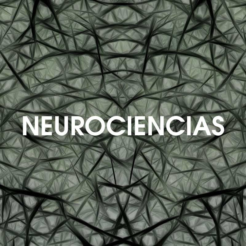 Neurociencias - Mente Psíquica - Entrenamientos para médiums y psíquicas - Contacto: info@mentepsiquica.es - WhatsApp: +34 675 829 401