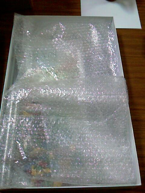 El interior viene muy bien protegido, con un plástico de burbujas.