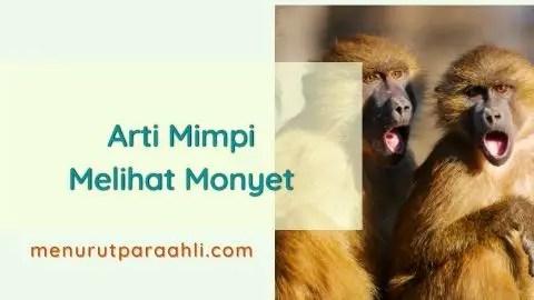 Bermimpi Melihat Monyet Kawin
