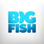 Big Fish Games Promo Codes & Coupons