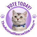 January2012-ShelterChallenge-CatJelly-VoteToday_120x120