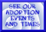 Visit our Adoption Events
