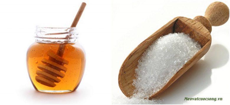 Sử dụng đường và mật ong giúp triệt lông hiệu quả