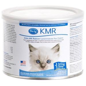 catbot-KMR12oz