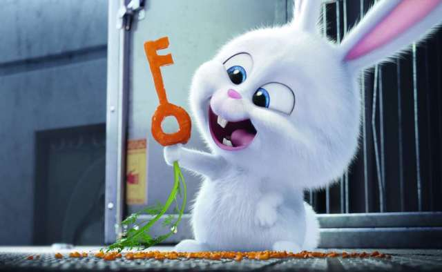 3092486-the-secret-life-of-pets-bunny[1]