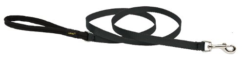 Premium Leash with Padded Handle - Black