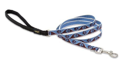 Premium Leash with Padded Handle - Muddy Paws