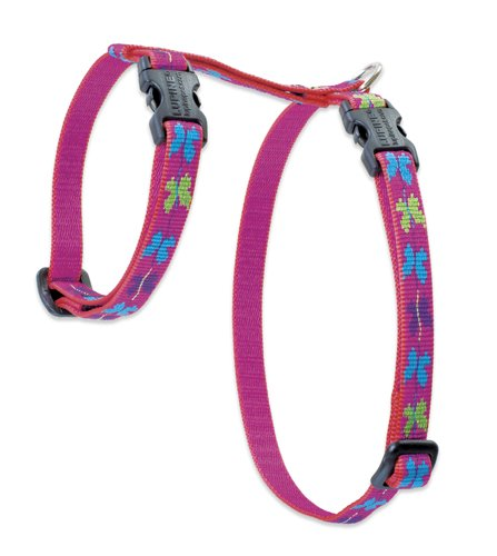 "Premium H-Style Harness - Wing It, 9-14"" Girth"