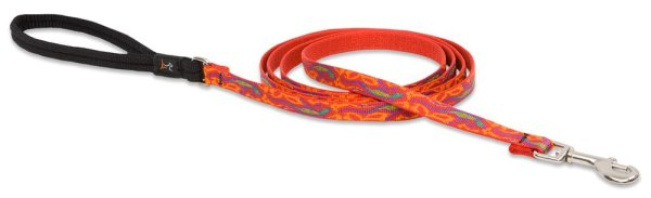 Premium Leash with Padded Handle - Go Go Gecko