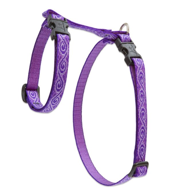 """Premium H-Style Harness - Jelly Roll, 9-14"""" Girth"""