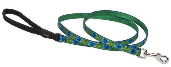 Premium Leash with Padded Handle - Tail Feathers
