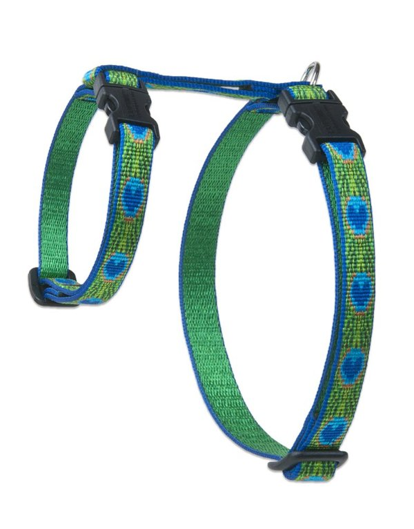 """Premium H-Style Harness - Tail Feathers, 9-14"""" Girth"""