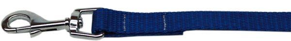 """Plain Nylon Leash 3/8"""" by 4ft Blue"""