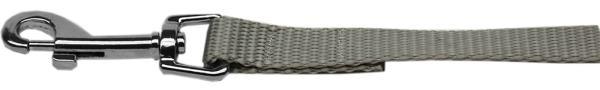 "Plain Nylon Leash 3/8"" by 6ft Silver"
