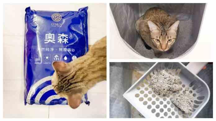 4 | 喵周刊 Meow Weekly