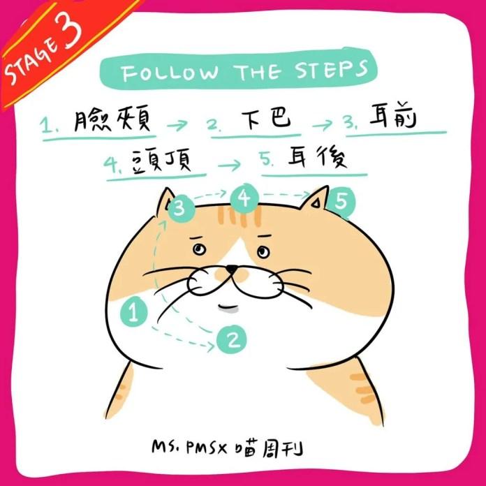 16 21 | 喵周刊 Meow Weekly