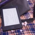 amazonにやられた!「Kindle Paperwhite」を持って満開の桜を楽しんできました