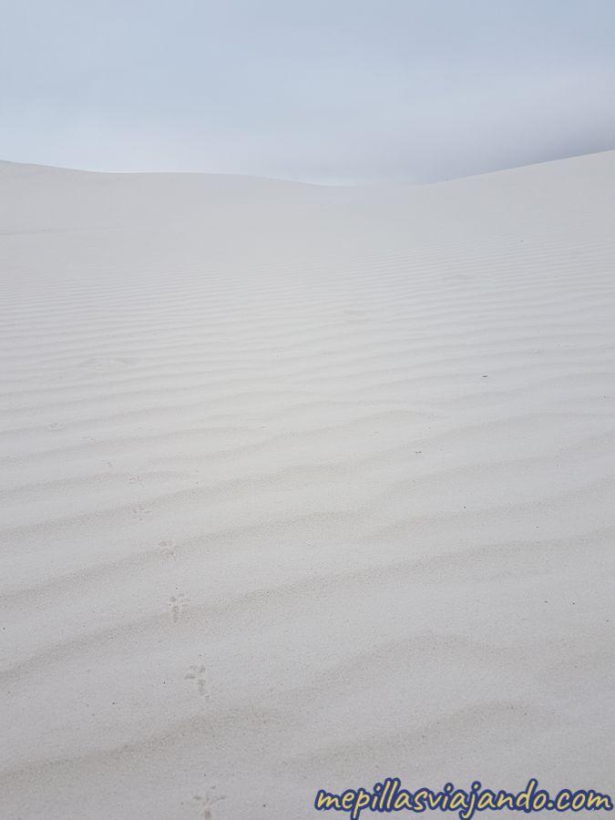 Las dunas blancas de White Sands