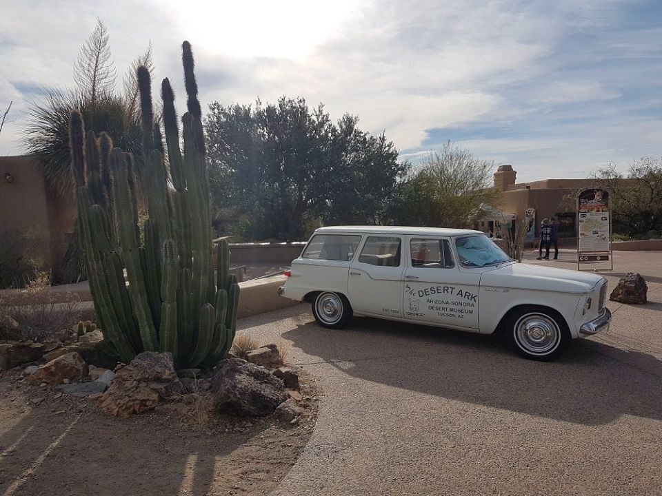 Alrededores de Tucson