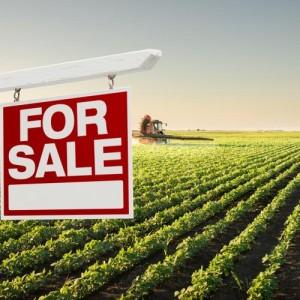 land ownership in Ghana