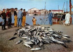 Pêcheauthonvers1970,personnages