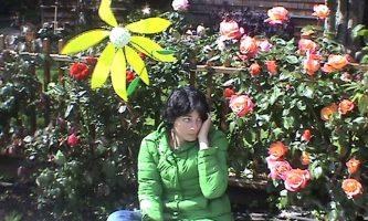 Daisy Camouflage (2008)