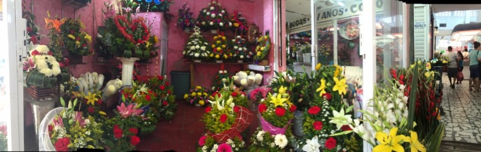 floreria-rosita foto