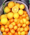 canasto-naranjas