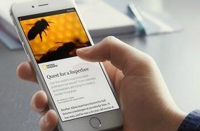 facebook-alianza-medios