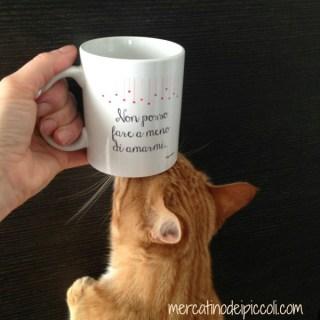 In viaggio con Zenzero, il nostro gatto rosso expat da Roma a Vancouver