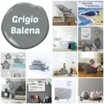Grigio Balena