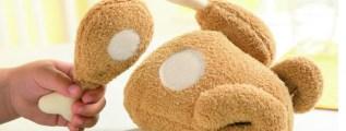 <!--:it-->Il pollo giocattolo<!--:-->