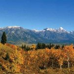 A Native's Take on the Real Estate Subdivisions of Jackson Hole