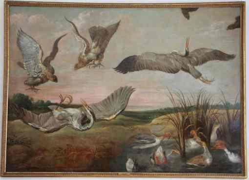 Lucha de aves