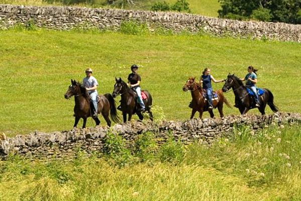 Shaker village horse