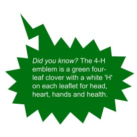 4 H did you know