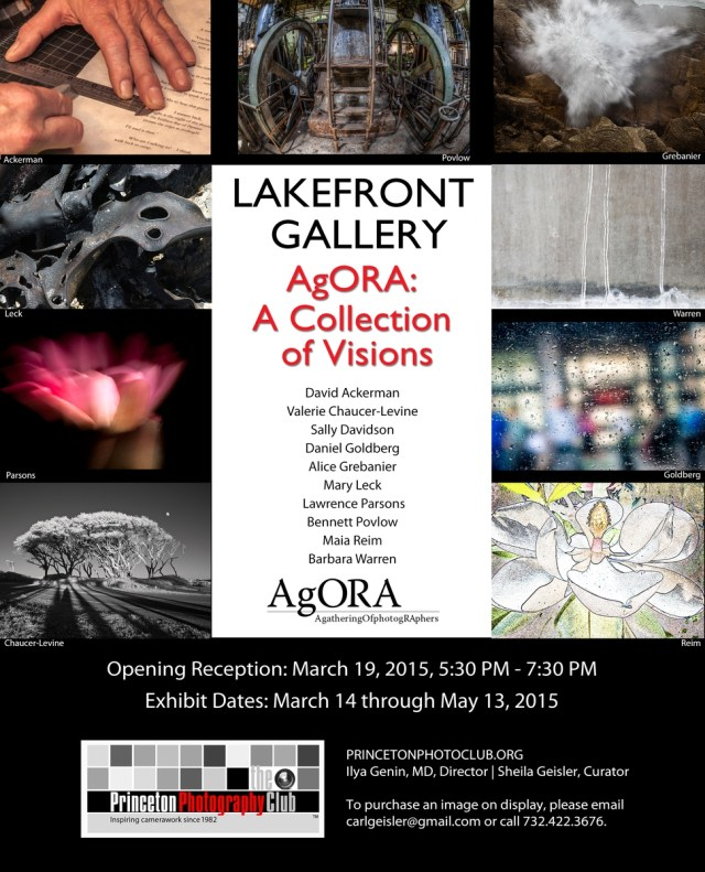 LakefrontPosterMarch2015-Agora