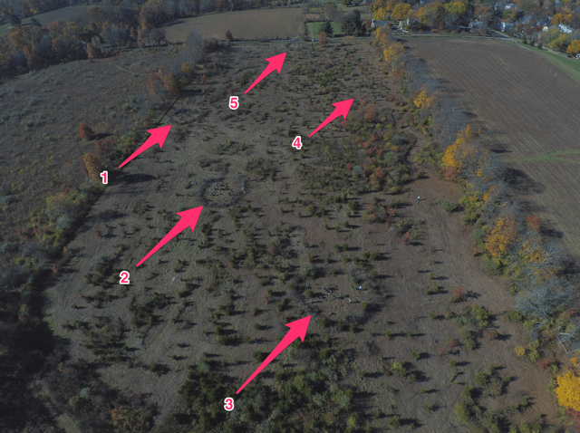 Volunteers created innovative visual and physical barrier rings to discourage deer browse. They used dead invasive shrubs and trees cut by volunteers in October. Can you spot the planting areas? - aerial photo courtesy of JP Willis of Willis Renovations LLC