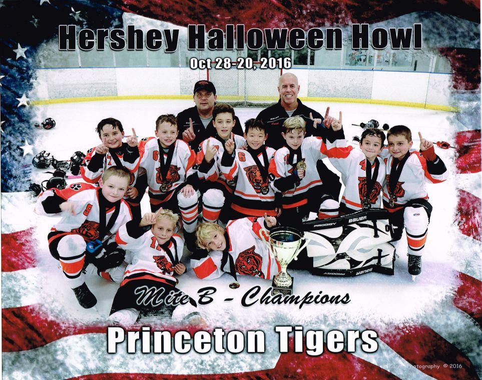 Princeton Youth Hockey Association 8u S Win Hershey Halloween Howl