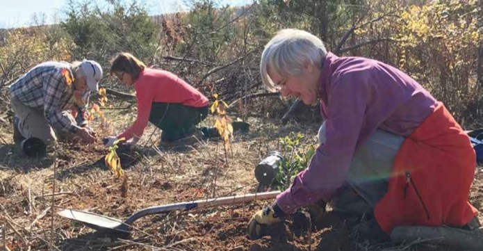 IN THE SOURLANDS: Make a Stewardship Resolution for 2017