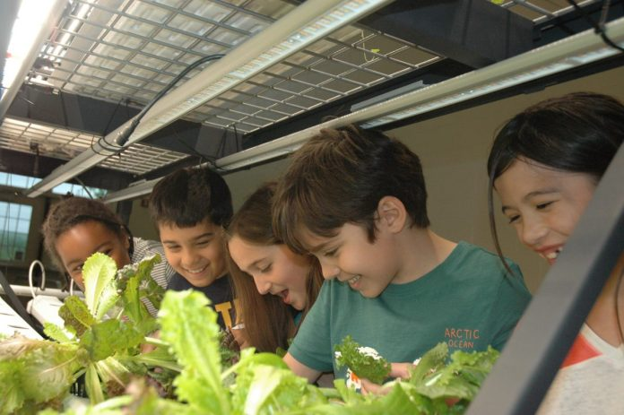 Princeton University's Vertical Farming Project Partners with Hopewell Elementary