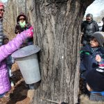 Families learn about the sugaring process at The Watershed Institute