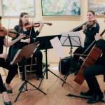 New Brunswick Chamber Orchestra Salon