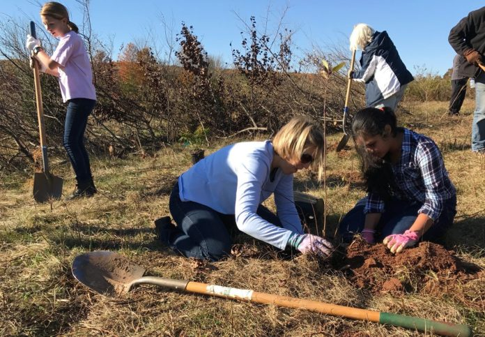 Volunteers to Plant 1,500 Trees in the Sourlands