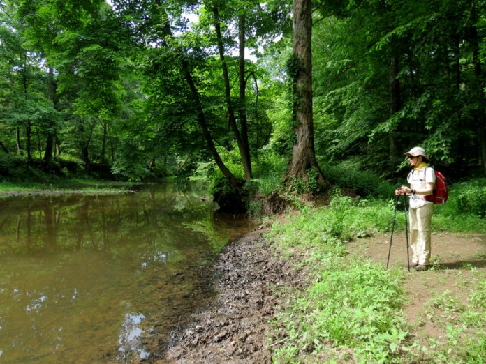 Solstice Guided Walks w. D&R Greenway