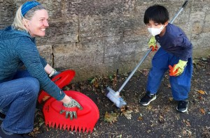 Merchiston Leaf Clearing Update